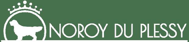 Noroy du Plessy